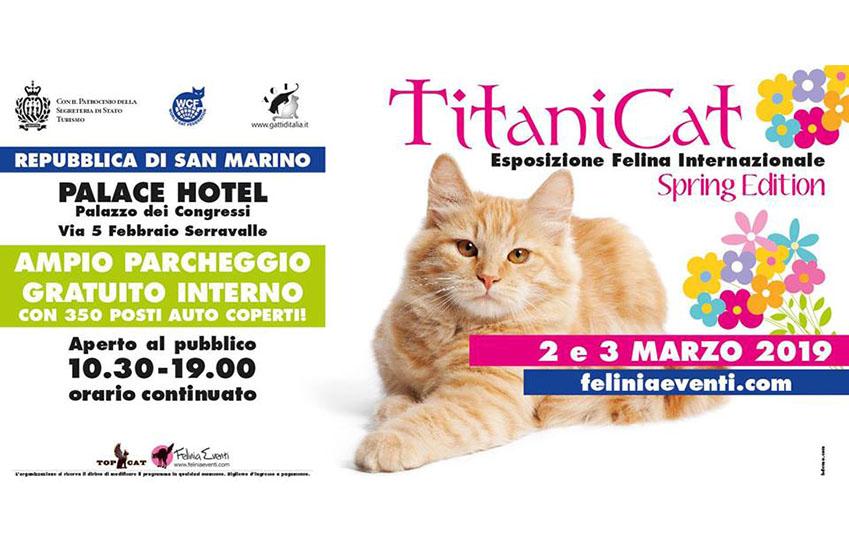 Esposizione Internazionale Felina - 2 e 3 Marzo 2019 - San Marino - Coccola Siberiana - Allevamento Gatto Siberiano - Buccinasco Milano